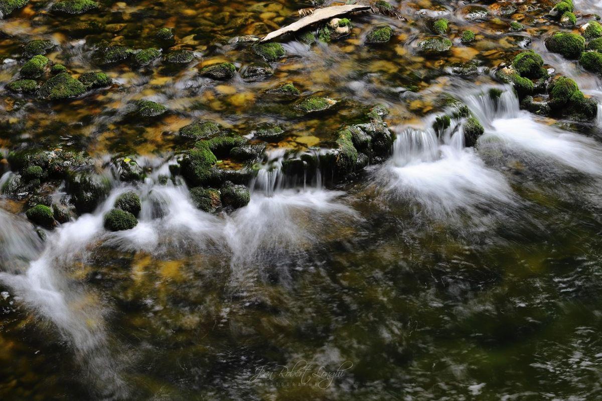 Gorges de l'Areuse - Été 2019 - 7 - ©2019 Jean-Robert Longhi Photographie non libre de droits