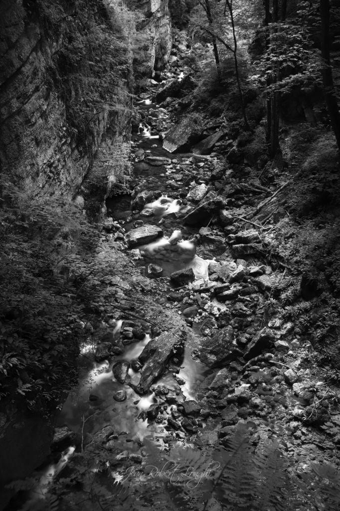 Gorges de l'Areuse - Été 2019 - 18 - ©2019 Jean-Robert Longhi Photographie non libre de droits