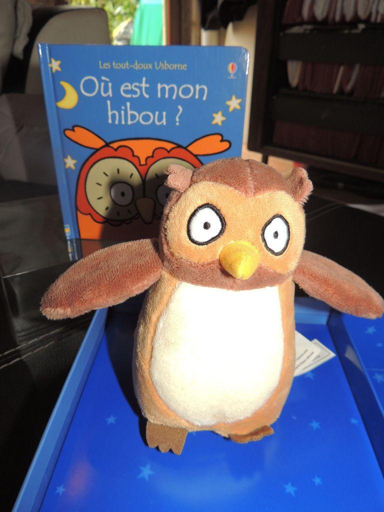 """Nouveauté éditions usborne """"où est mon hibou?"""""""