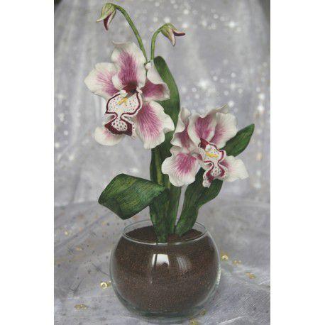 Orchidées mauves - sensum