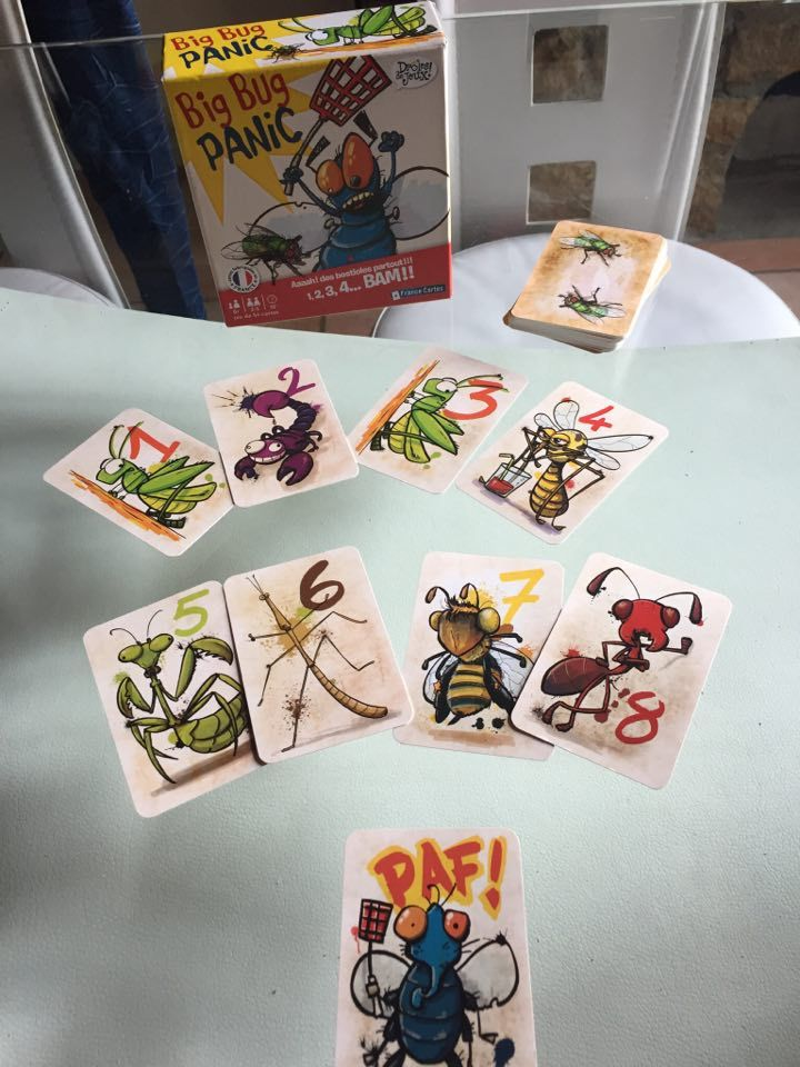Big bug panic le jeu qui va te rendre fou de France cartes