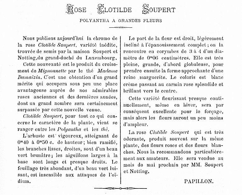 Journal des Roses 1889