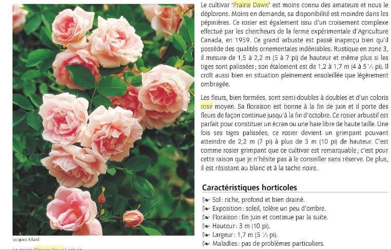 """extrait de """" Botanique et horticulture dans les jardins du Québec """": guide 2002 De Giguère, Rock"""
