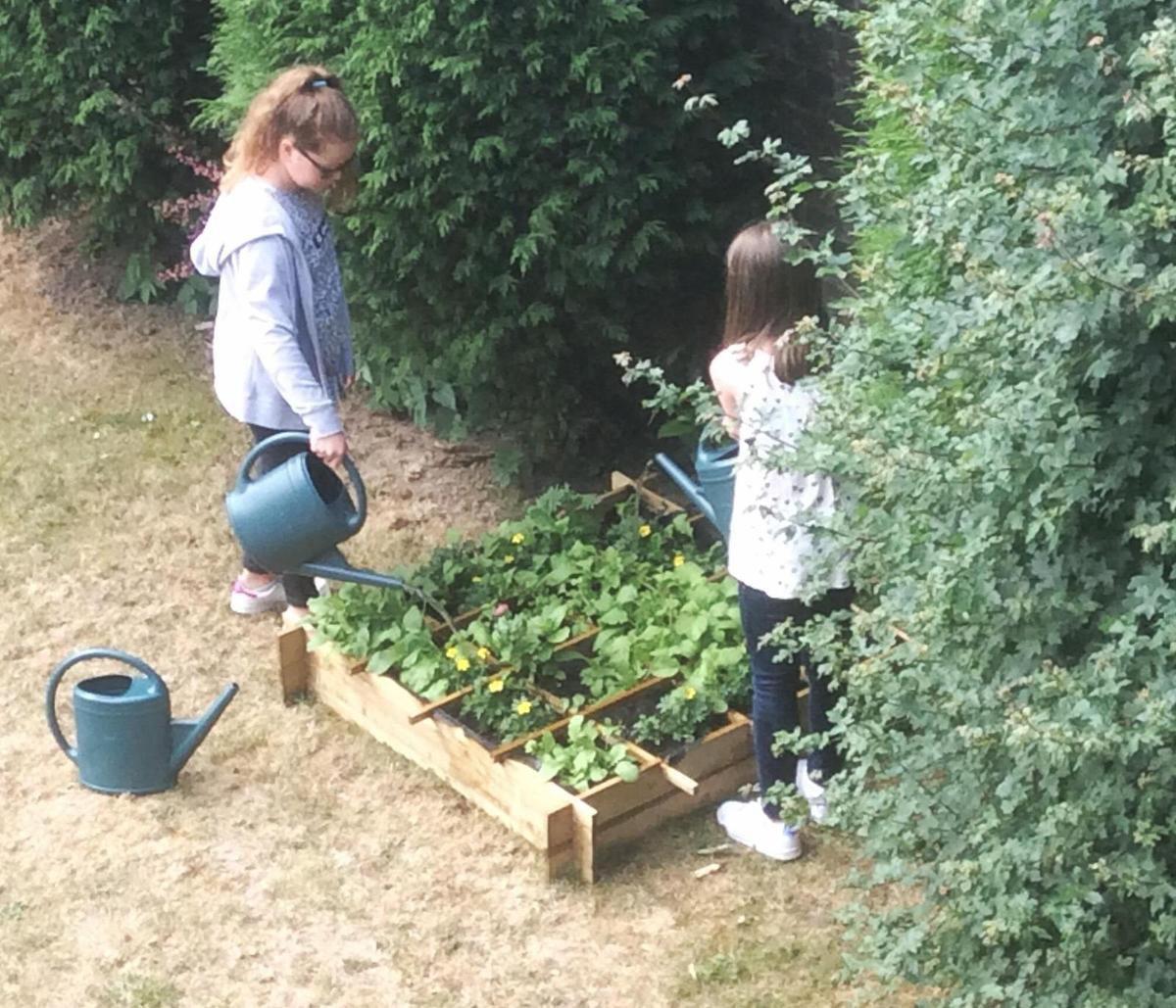 Un jardin à Savio, de belles pousses de jardiniers !