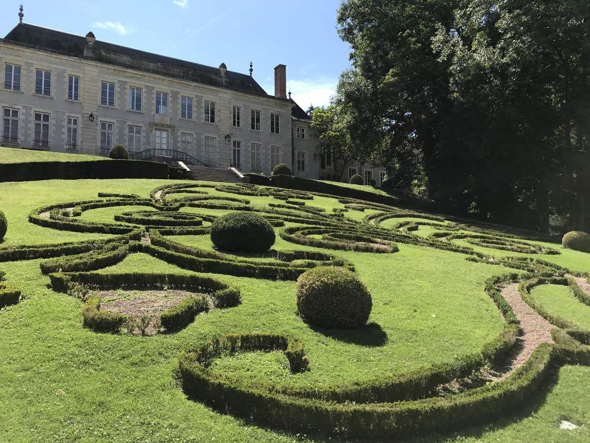 Les buis tout mités du Parc Floral de la Source à Orléans