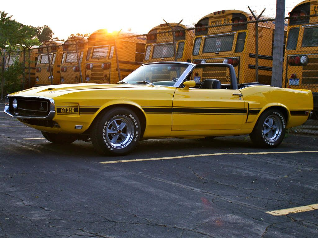 Shelby GT350 1969 / 1970