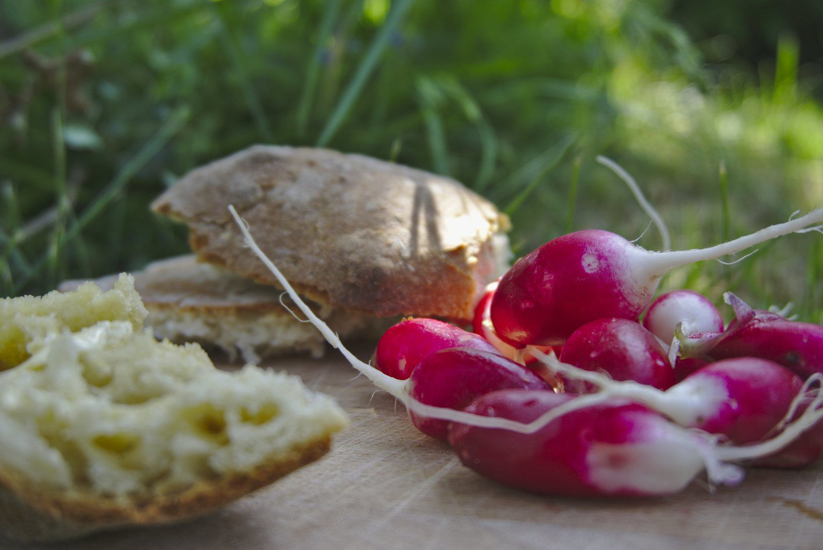 Défi photo 30 jours - Jour 13 : Dans mon jardin : Des radis !  avec du pain maison, du beurre, quoi de meilleur ?