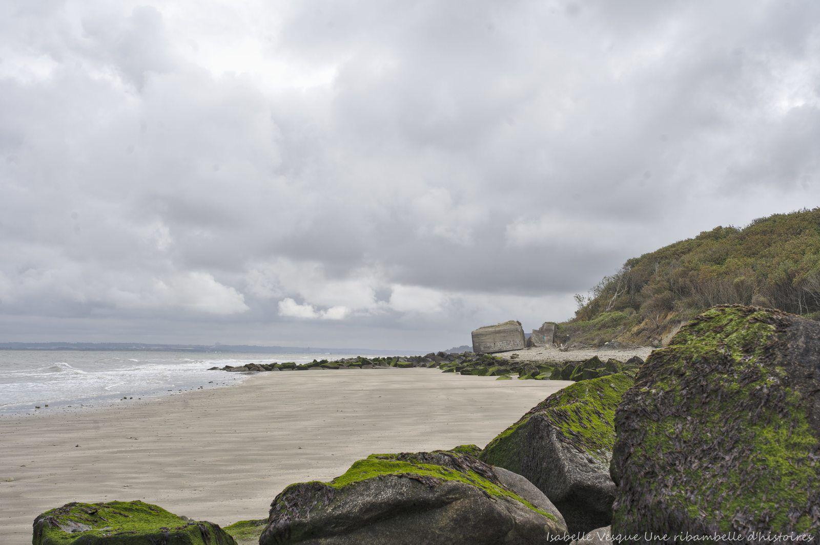 52 Semaines en photo en 2020 # 30 - Rochers, plage de Criqueboeuf