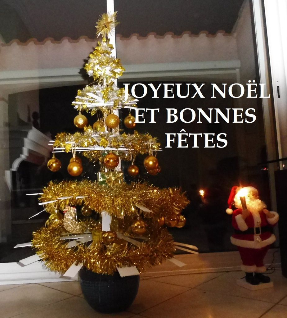 JOYEUX NOËL ET BONNES FÊTES DE FIN D'ANNEE !