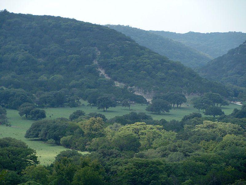(Texas Hill Country, Texas, photo de Zereshk, wikipédia)