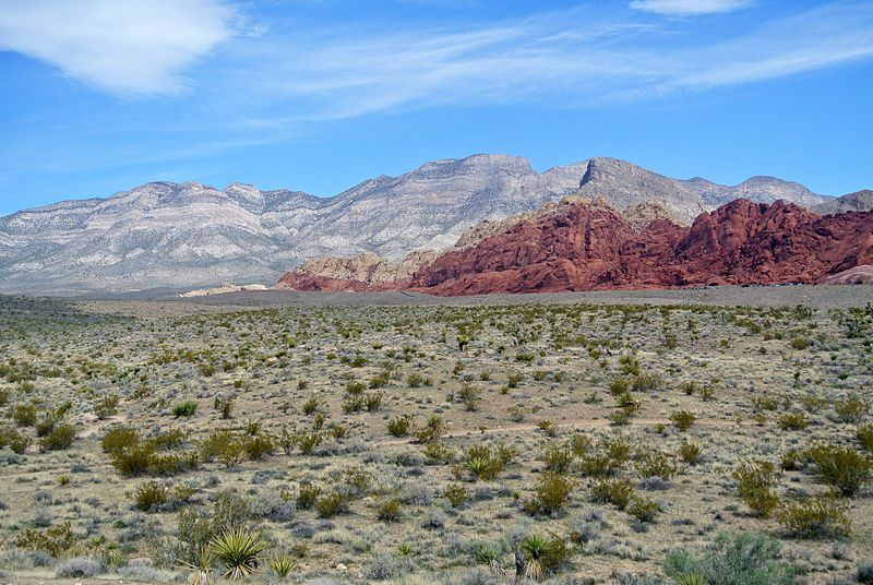 (Red Rock Canyon national Conservation Area, Nevada, photo de Wilson44691, 15/03/2013, wikipedia)