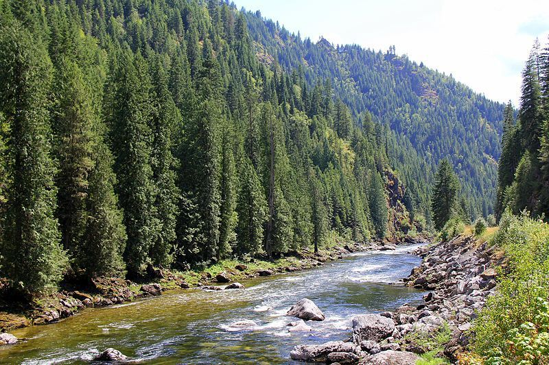 (Lochsa River, Clearwater National Forest, Idaho, photo de Forest Service Northern Region from Missoula, MT, 05/08/2011, www.flickr.com)