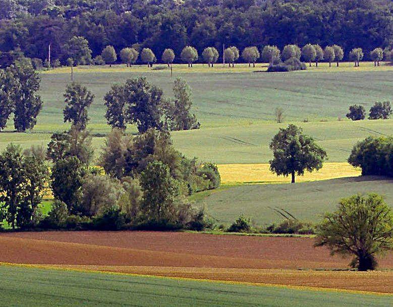 campagne gascogne - lectoure - agriculture - agriculteur - nature - travail des champs - théâtre rustique