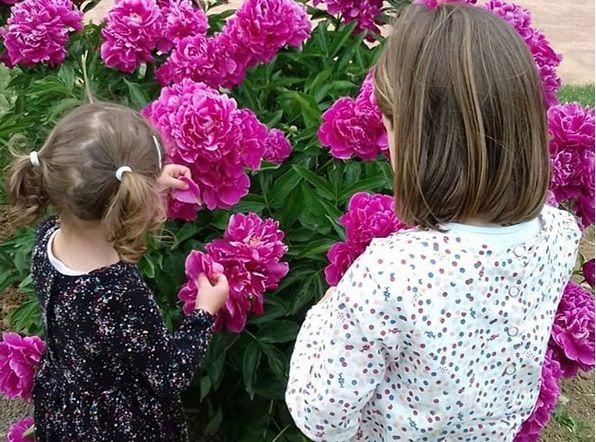 blog-maman-picou-bulle-lyon-petits-bonheurs-mai-2018-roseraie