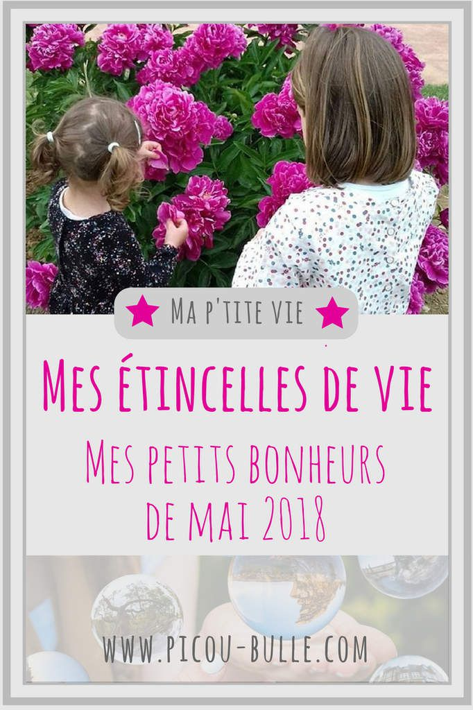 blog-maman-picou-bulle-lyon-pinterest-petits-bonheurs-mai-2018