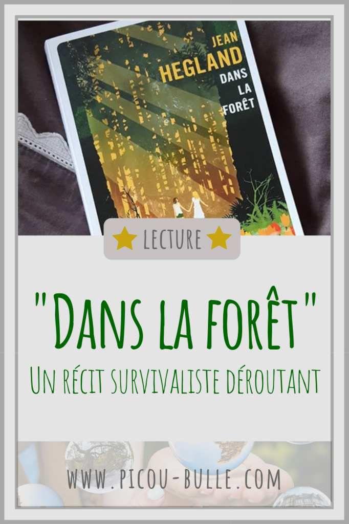 blog-maman-picou-bulle-pinterest-roman-dans-la-foret-hegland