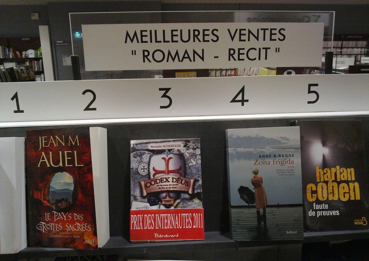 Alexandre Schoedler.Fans,le blog.Autour de l'auteur à succès.Ses romans classés meilleures ventes
