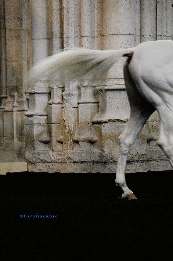 Abbaye-2010  Tirage Dibond 80x120 - 5/6 - 1460€