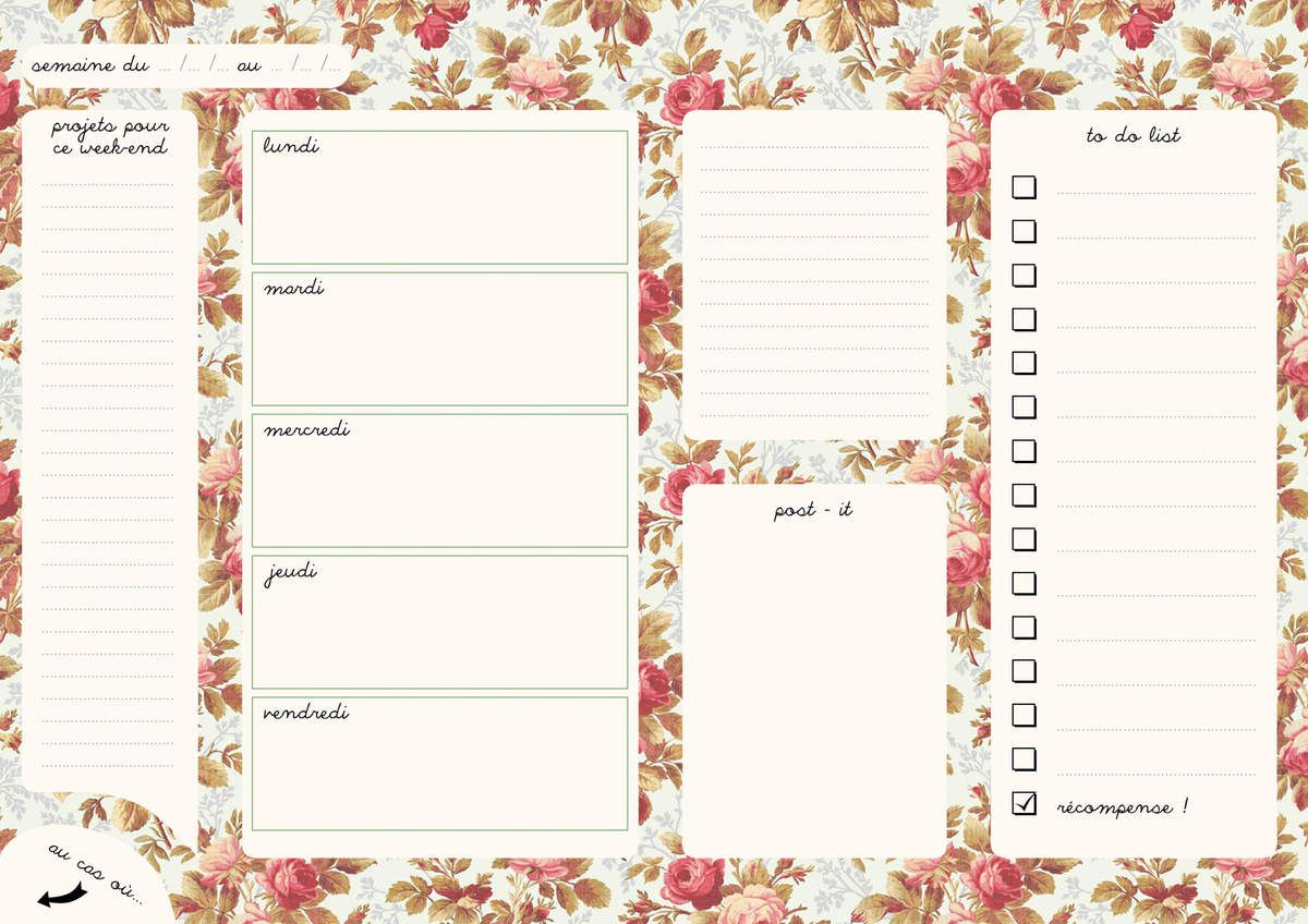 Semainiers à imprimer , très pratique pour organiser sa semaine !