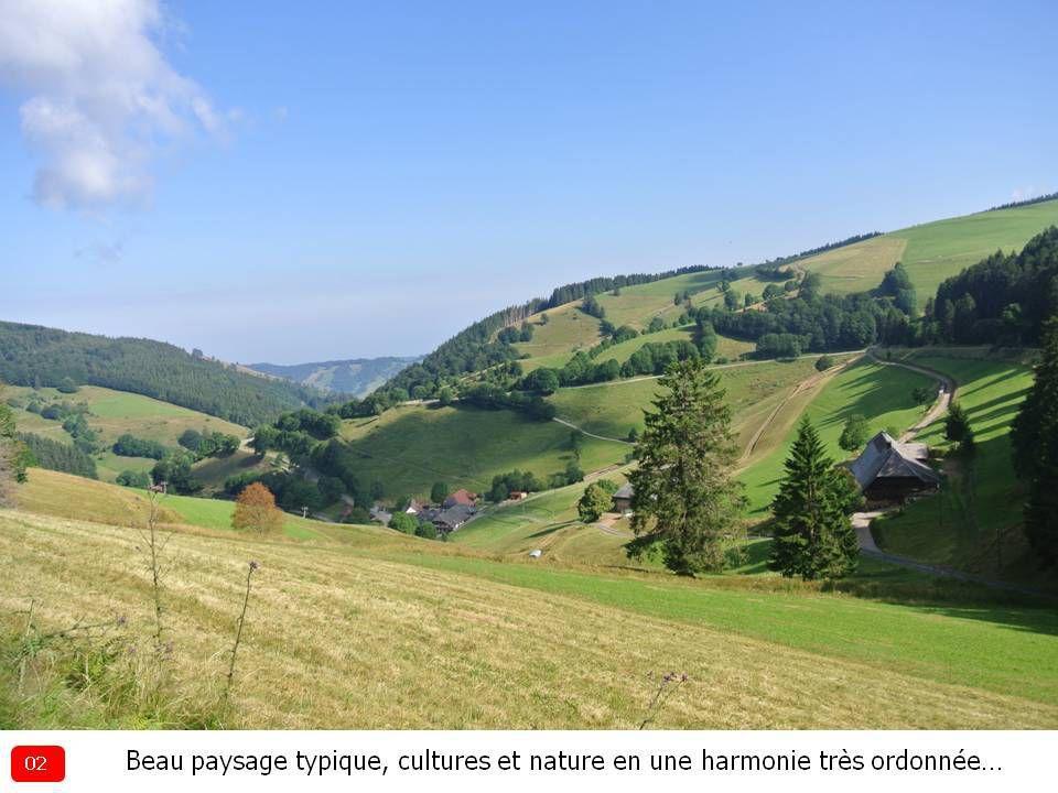 Randonnée du 16.07.2019 : Wiedener Eck > Krinne > Belchen > Multen