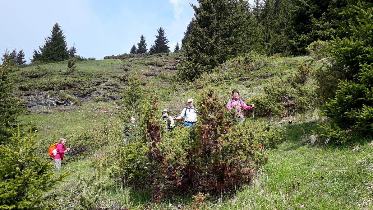 Séjour à Bessans (Parc de la Vanoise) du 1er au 8 juin 2019