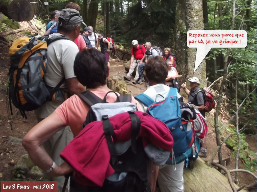 Bulle du CVR n°6 - 21.04.2020: Aujourd'hui nous allons suivre les pas des guides du CVR…