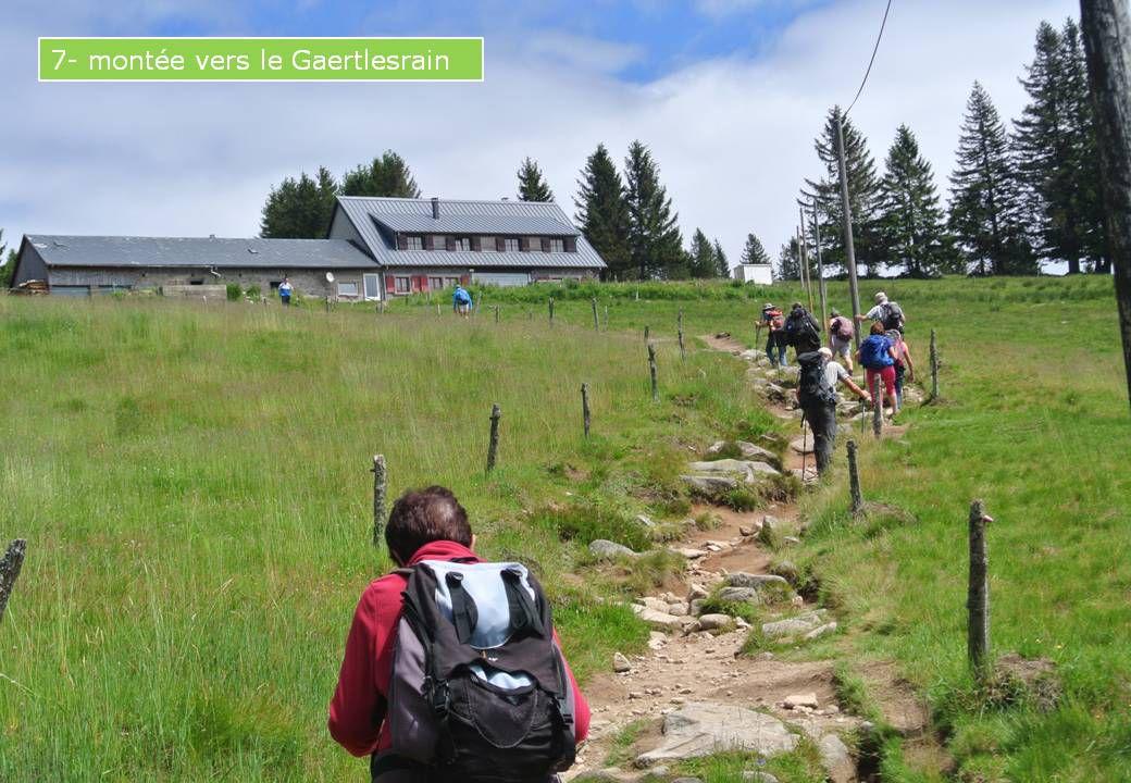 RANDO. LE RETOUR: 30.06.2020 - Rando du Col de la Schlucht au lac Vert (Chalet Erichson) en passant par les Hirschsteine.