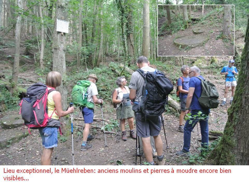 Randonnée du 21.07.2020 : St Hippolyte – Ht Koenigsbourg, surprise...surprise !
