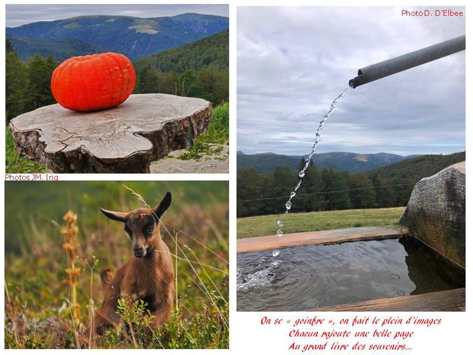 Randonnée du 25 août 2020: Markstein - Col d'Oberlauchen - FA Salzbach - Breitfirst, une sortie pleine de charmes, un beau poème......