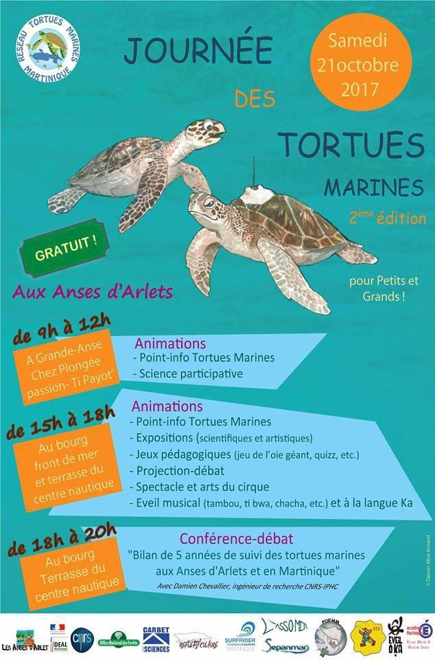 JOURNEE DES TORTUES MARINES AUX ANSES D'ARLET et programme de la semaine avec les scientifiques.