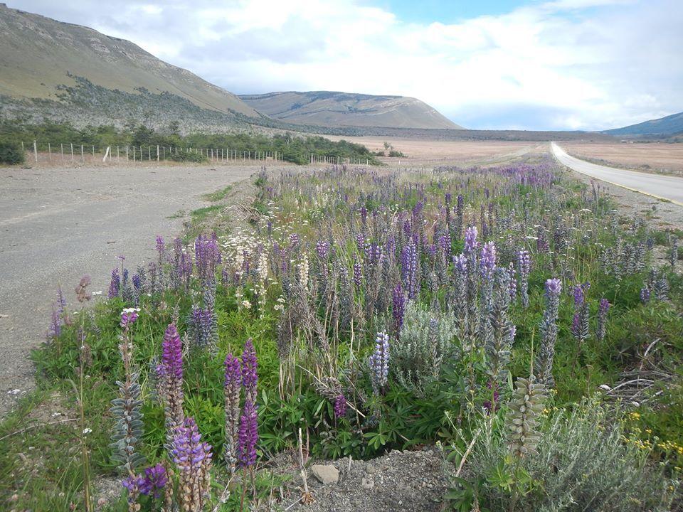 Balade en Patagonie