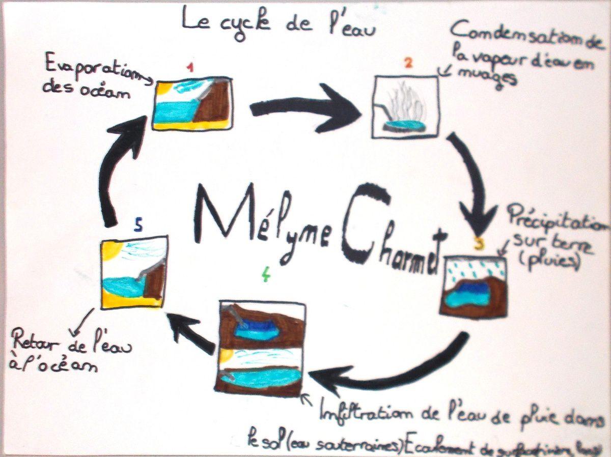 Les Magritte de la semaine!!!