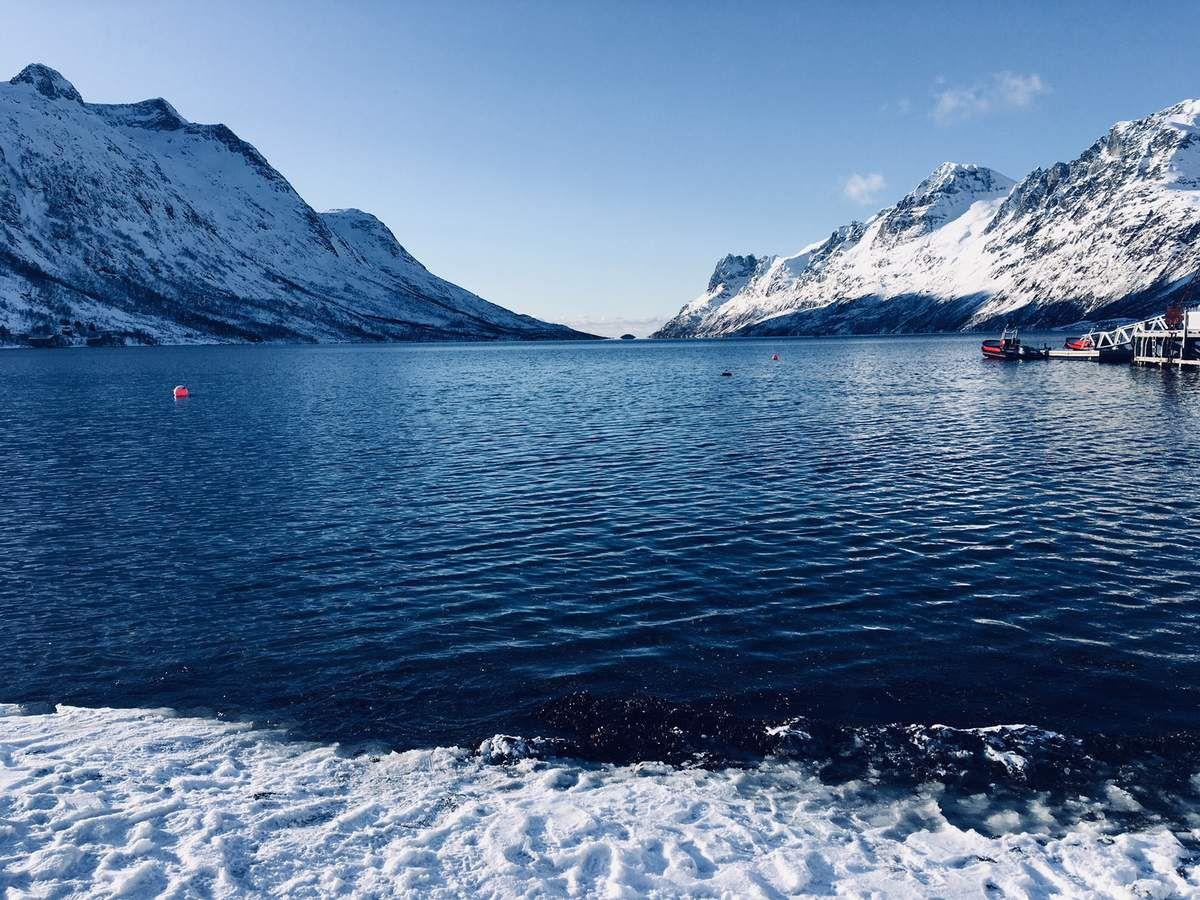 Balade au delà du Cercle Polaire Arctique