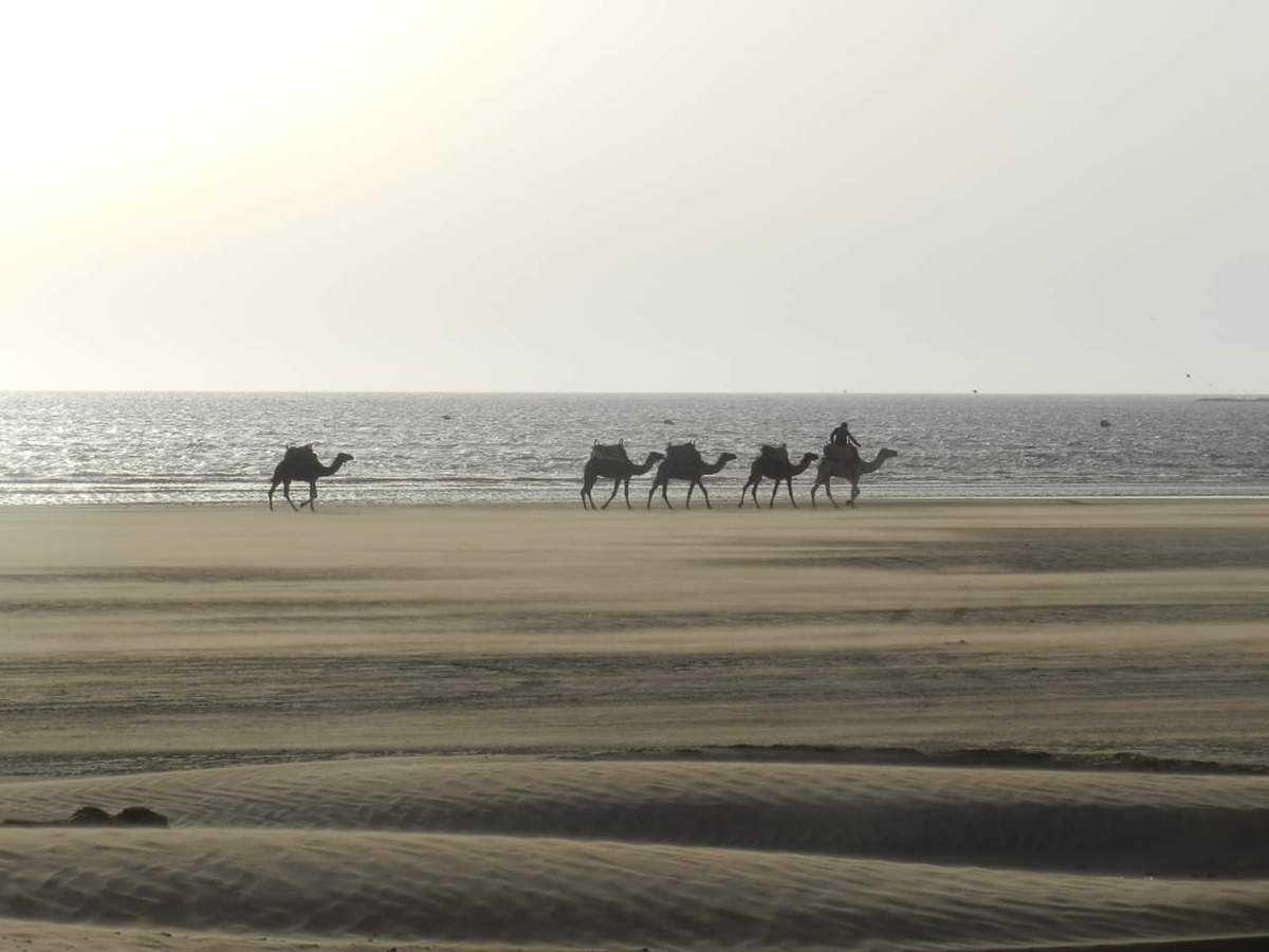 Balade à Essaouira!