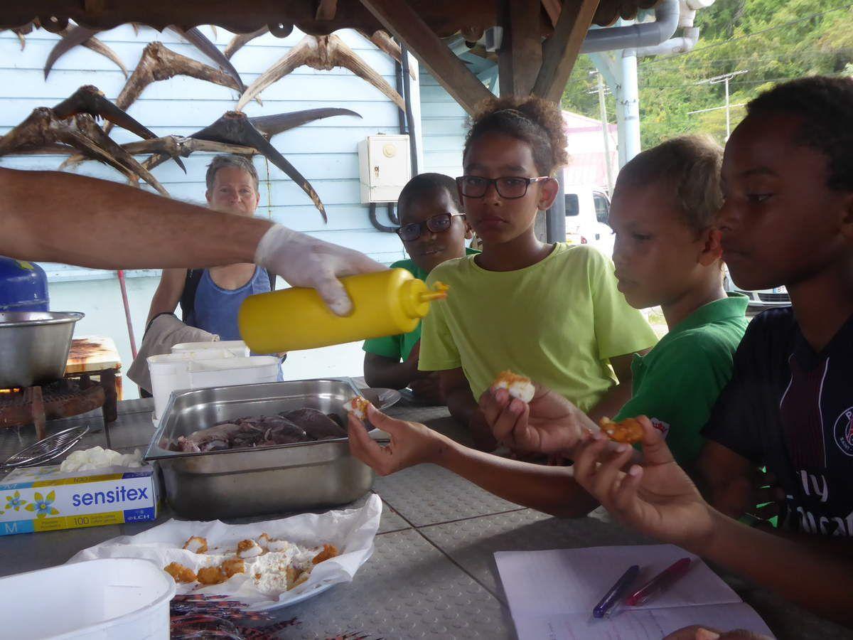 Notre Aire Marine Educative de Grande Anse (AME)