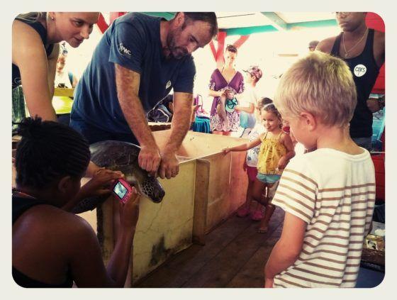 Damien Chevallier et le recensement des tortues par NORA