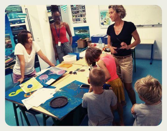 Rencontre avec Mariane en Guadeloupe: clinique de tortues, bouturages de corail, aquarium ...