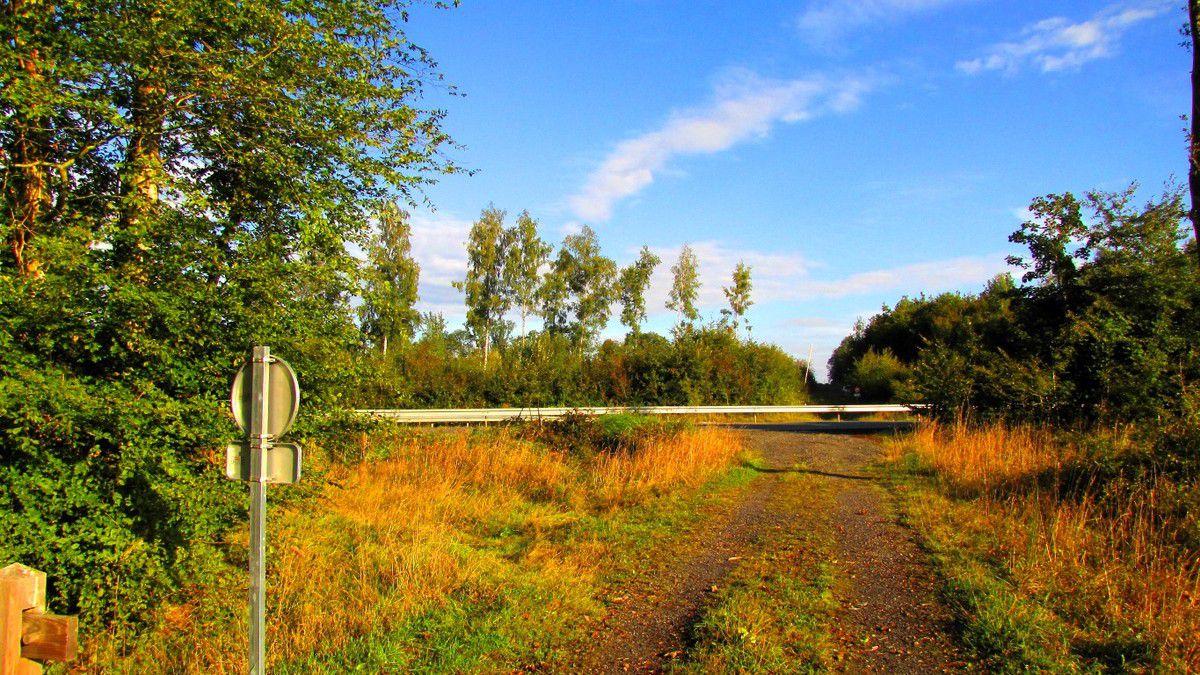 carrefours nommés en forêt de Retz