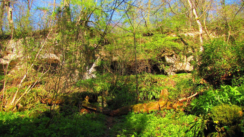 lieux atypiques en forêt de Retz