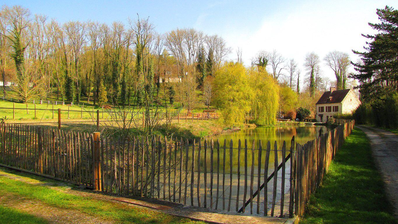 l'étang de Puiseux-en-Retz