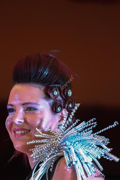 DEFILE SHOW COIFFURE 2017