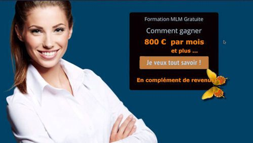 Formation marketing de reseau