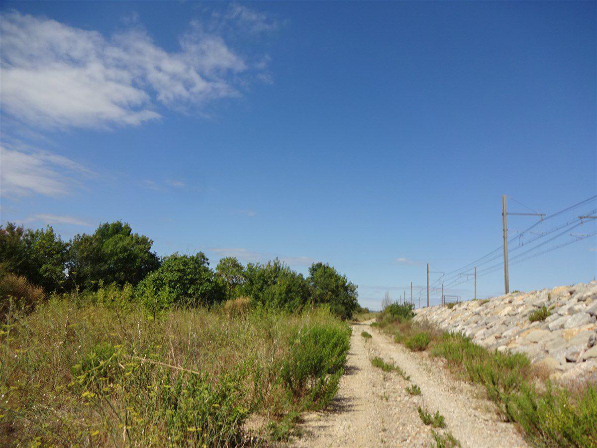 Samedi 22 août : A la recherche de sentiers...