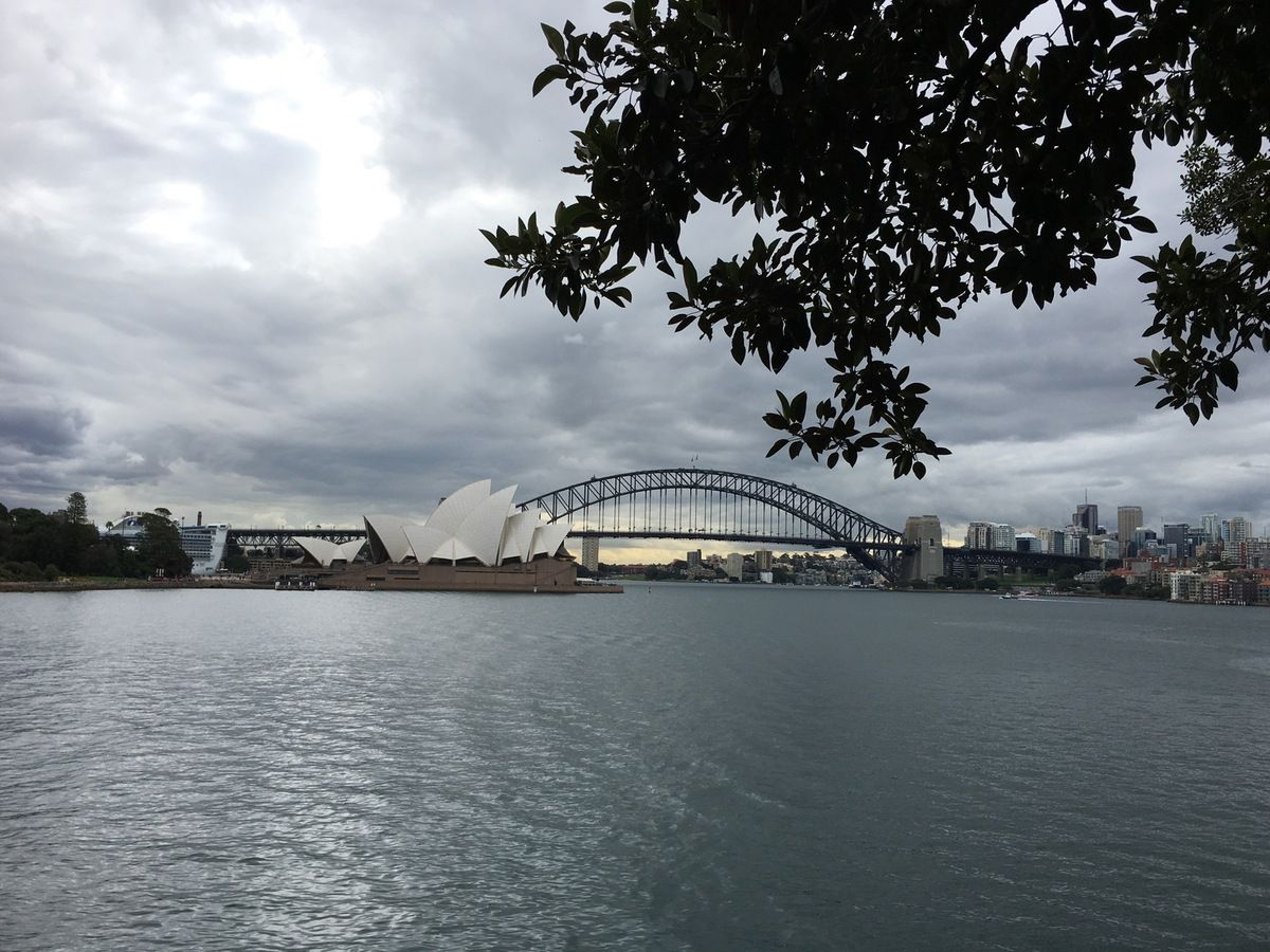 Belle vue de l'Opera House et du Harbour Bridge