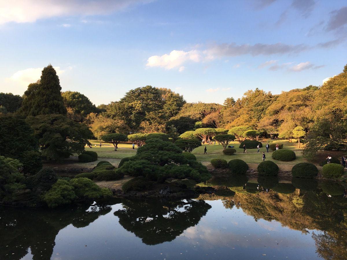 Le parc Gyoen, havre de paix au cœur de Shinjuku