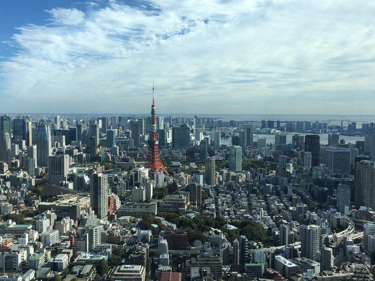 Vue panoramique de Tokyo du roof top de la Mori tower