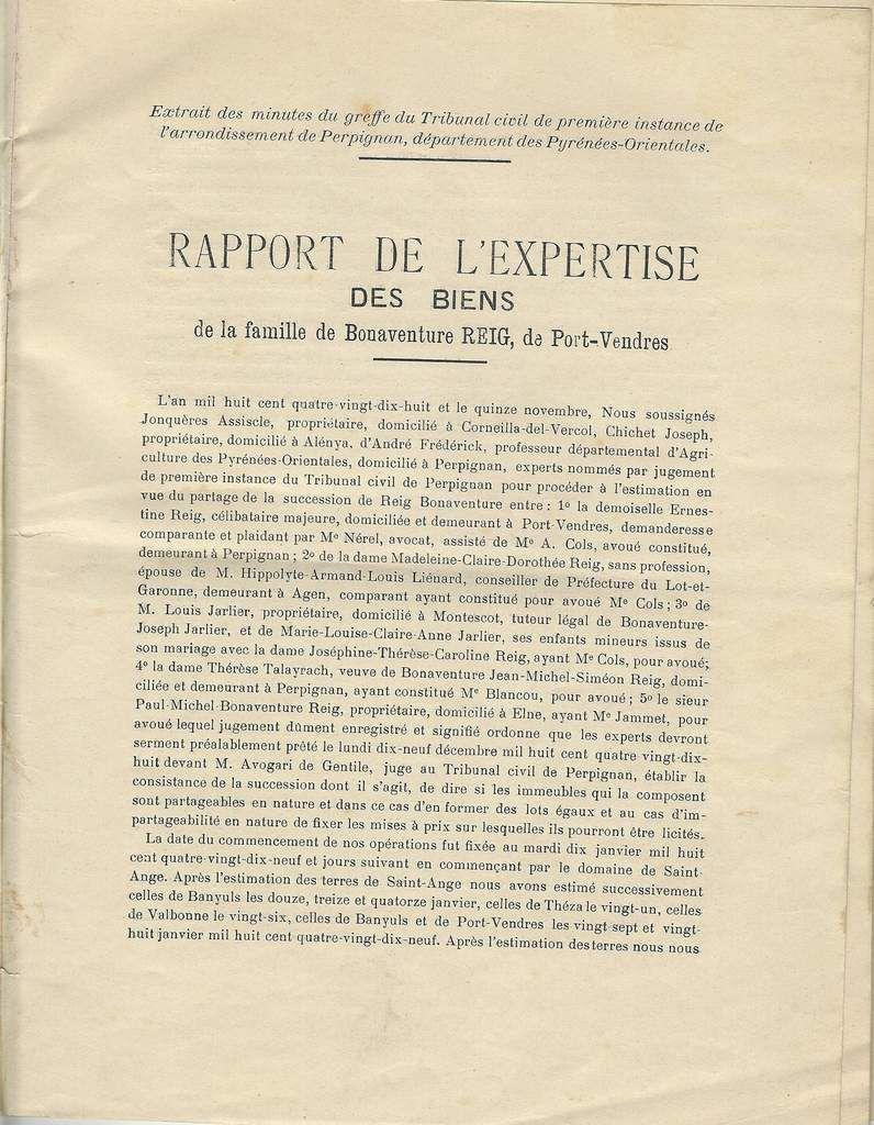 15 novembre 1998. Rapport de l'expertise des biens de la famille de Bonaventure Bonnet-Reig