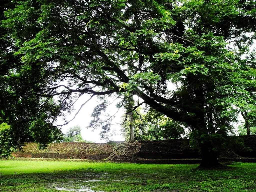 Mur d'enceinte de la ville fortifiée dans le parc historique de Kamphaeng Phet