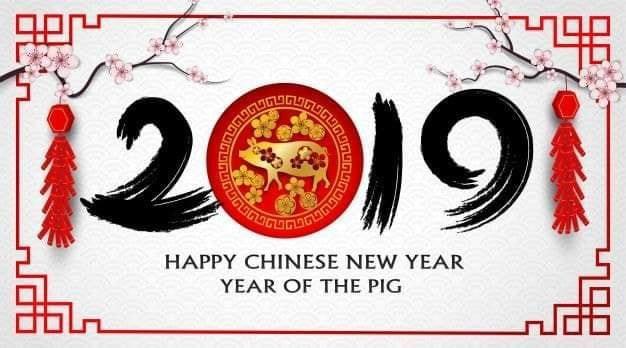 2019 année du Cochon de Terre
