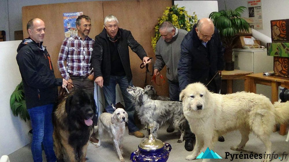 Expo Canine Tarbes